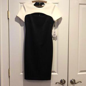 Calvin Klein NWT Women's Sz 4 Scuba Cut Out Dress